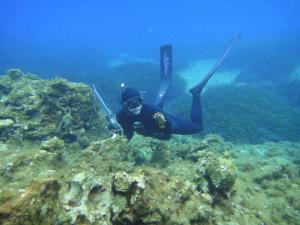 Akrotiri Fish Reserve Diving Tour Site Packages