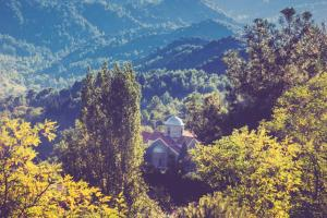Hiking Tour At Troodos Mountains Packages